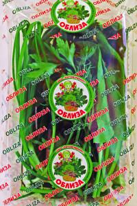 Зеленые щи copy
